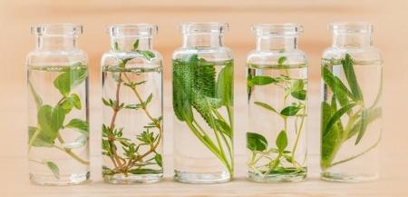 Исцеление цветочной водой